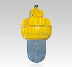 BFC8140 内场防爆灯|海洋王|海洋王照明|海洋王灯具