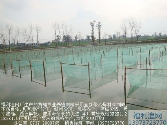 黄鳝/泥鳅养殖专用网箱
