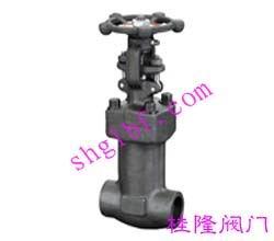 锻钢焊接波纹管闸阀WZ61H/Y