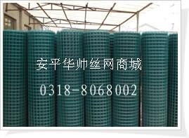 不锈钢电焊网 浸塑电焊网 圈玉米网 荷兰王厂家