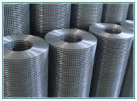 供应镀锌电焊网,镀锌电焊网规格,镀锌电焊网厂家
