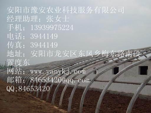 供应现代化温室大棚支架生产大棚支架厂家