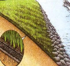 植草固土用.三维植被网/三维土工网垫