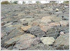 石笼网铅丝石笼网镀锌石笼网包塑石笼网石笼网厂