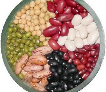 天禾丰现款采购:玉米糠粕次粉油糠大豆小麦高粱等