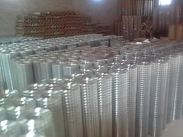 电焊网 安平电焊网 丝网电焊网 镀锌电焊网 改拔电焊网 圈玉米网