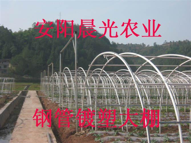 温室花卉大棚骨架机 安阳晨光蔬菜大棚
