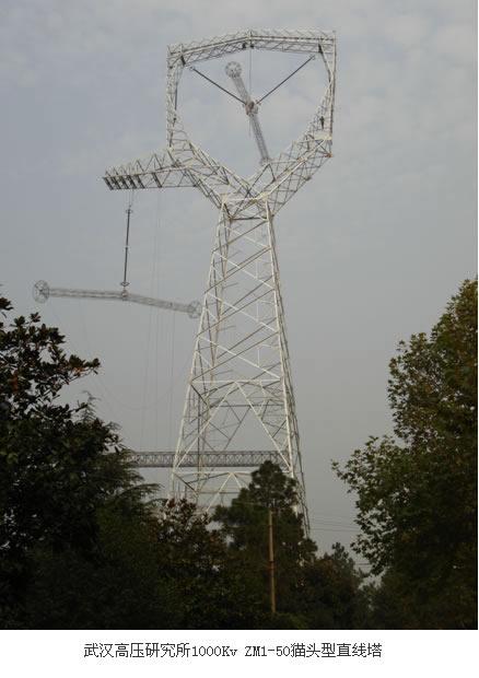 塔,输电线路铁塔,角钢塔,钢管塔,跨越塔,通信塔