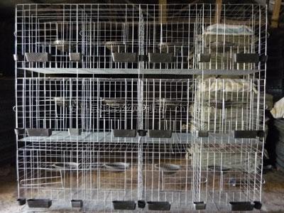 鸽子笼子价格图片