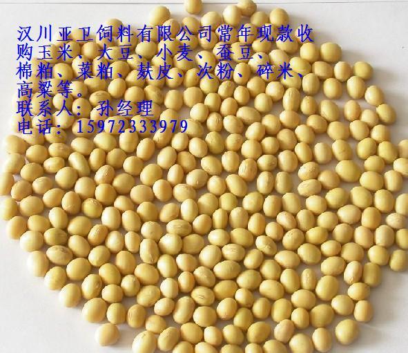 亚卫饲料求购大豆菜饼苞米