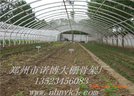 河南郑州氯化镁塑料大棚骨架机,温室大棚材料,蔬菜大棚造价