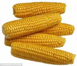 玉米,小麦,大豆,高粱,豆粕,麸皮,次粉,碎米