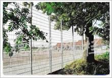 园林市政护栏网