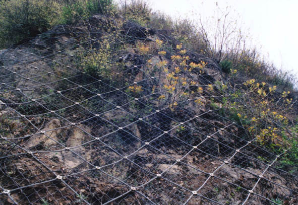 护坡网 重型六角网 经纬网 坚固耐用