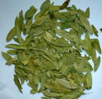 番泻叶甙 Senna Leaf P.E.