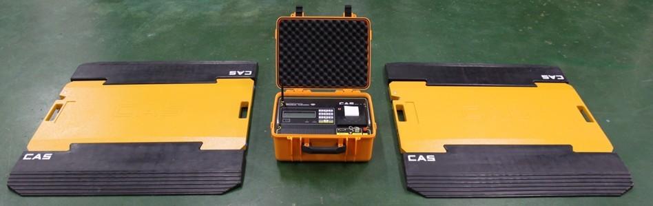 枣庄轴重秤,日照检测仪,山西便携式测重仪
