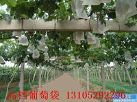 山东省莱阳银通纸业兆丰牌葡萄袋,兆丰牌葡萄果袋