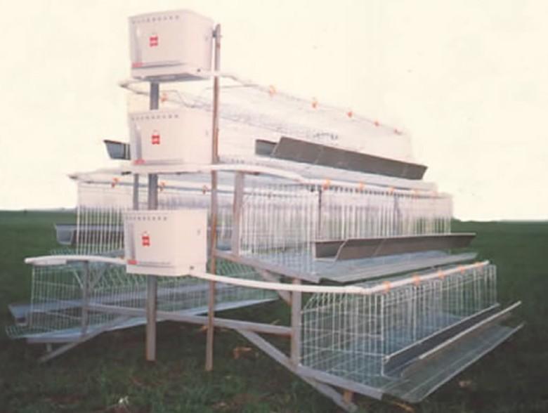 森沃丝网深加工产品:鸡笼,兔笼
