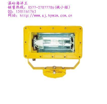 防爆BFC8100强光泛光灯.温岭海洋王BFC8100价格