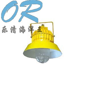 海洋王灯具 BPC8710  防爆平台灯