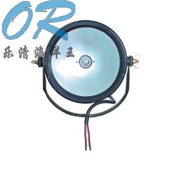 海洋王DGY100/24防爆泛光工作灯