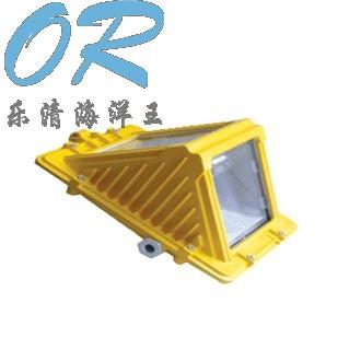 海洋王  DGS70/127B(C)  矿用隔爆型巷道灯