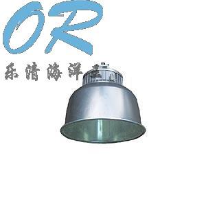海洋王NFC9850高效场馆顶灯