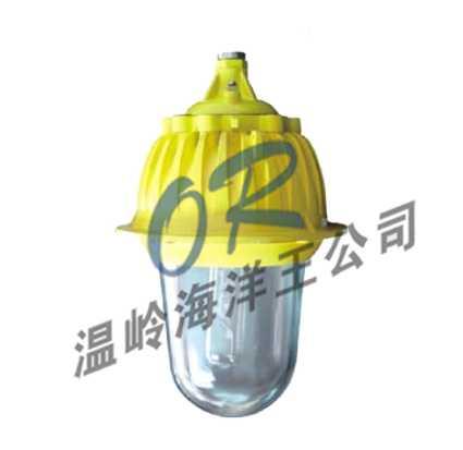 防爆灯,NFC9175,NFC9176