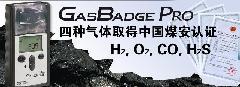江苏宿迁便携式GB90气体检测仪