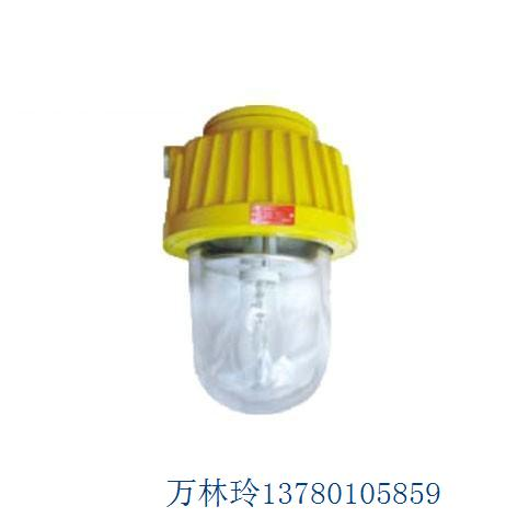 BPC8730防爆平台灯,平台灯,防爆灯具,厂家直销