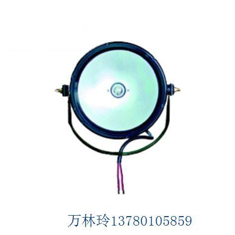 DGY100/24防爆泛光灯节能泛光灯,防爆泛光灯,强光泛光灯