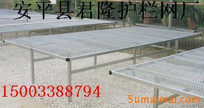 苗床网,北京温室苗床网,大棚苗床网架,苗床网规格