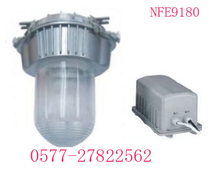 [NFE9180]应急[NFE9180]防眩泛光灯 大浪出品