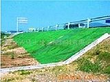 安徽三维植被网价格15651697777