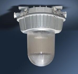 NFE9180 防眩应急灯-海洋王应急顶灯,NFE9180价格