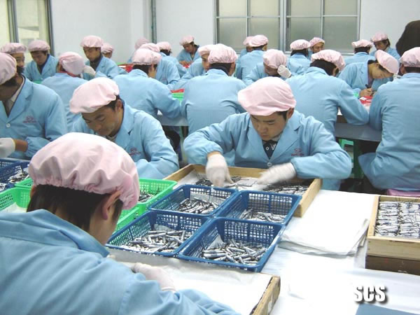 山东验货服务 华北地区验货服务 第三方检品公司