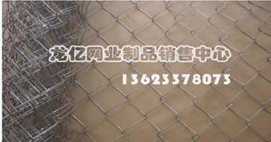 供应河北龙亿 长期供应 平纹编织包塑勾花网
