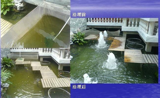 广州小区景观水处理|惠州花园景观水处理方法