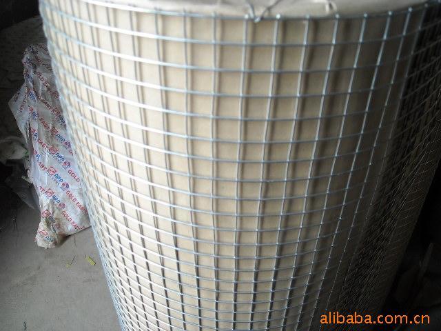 电焊网、1/4热镀锌电焊网【电焊网厂家】