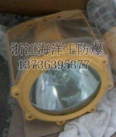 浙江防爆照明灯丨BTC8210系列防爆投光灯丨防爆灯具厂家