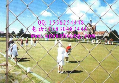体育场围栏网,金属隔离栅,勾花网护栏网
