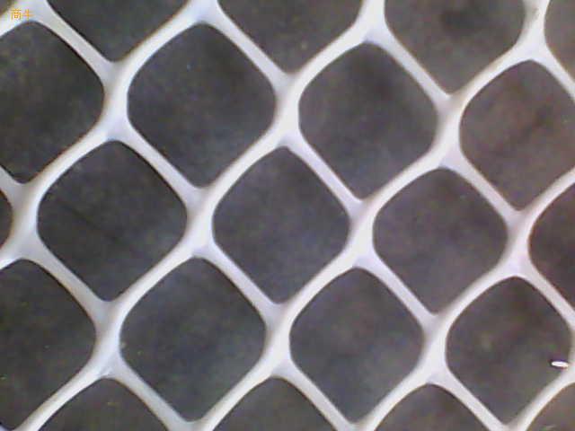 塑料平网 养鸡网 养鸭网 养殖 土工网 路基网 空调网 汽车坐垫