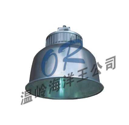 温岭海洋王NFC9850高效场馆顶灯,出厂价格,报价