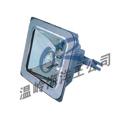 海洋王应急设备NFE9100防眩应急棚顶灯