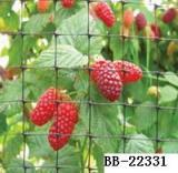 樱桃防鸟网,不隐形不伤鸟倡导保护生态环境