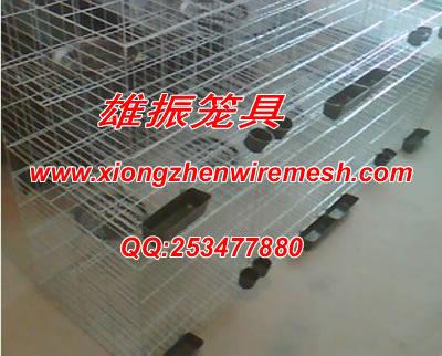 四层16笼位鸽子笼 鸽子笼子 养殖笼具
