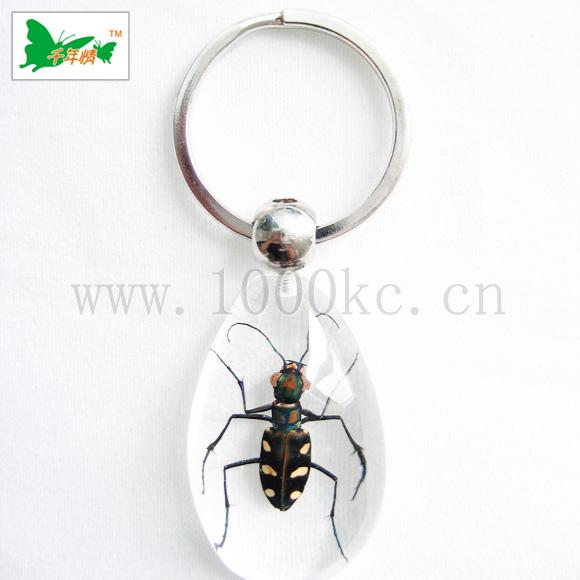 时尚昆虫琥珀饰品