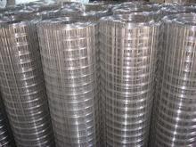 改拔丝电焊网 防护网 养殖网