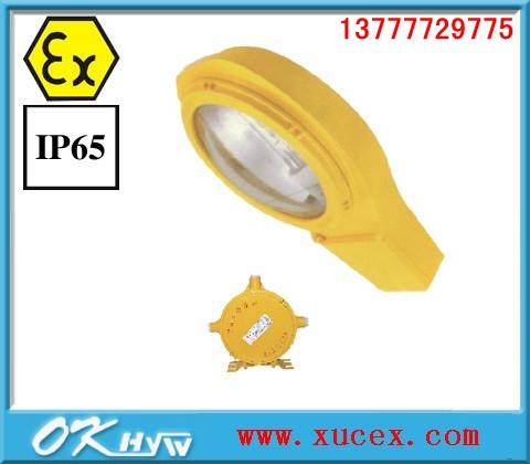 供应海洋王BLC8610//BLC8610防爆道路灯价格