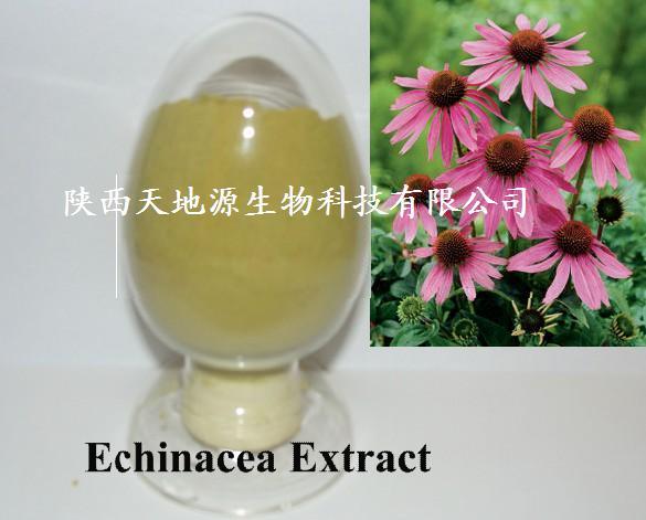 供应紫锥菊提取物菊苣酸2%